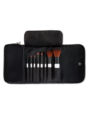 53401 Mini Brush Set Open